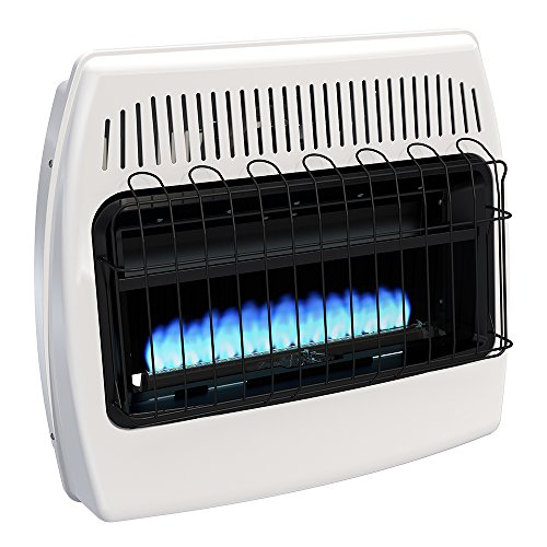 Dyna-Glo BF30NMDG 30,000 BTU Natural Gas Heater