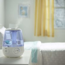 Best Humidifier Under $50