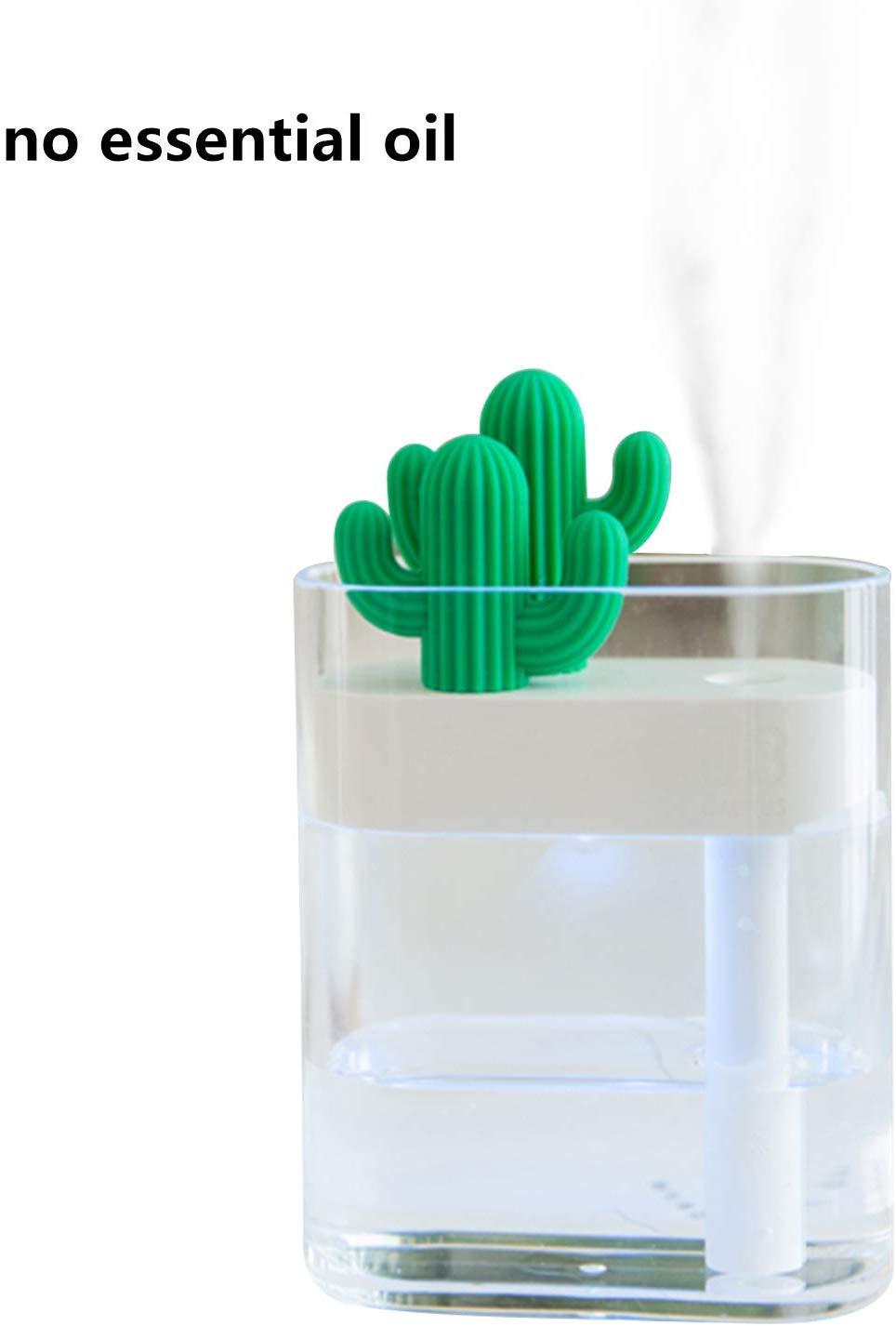 warrita Cactus